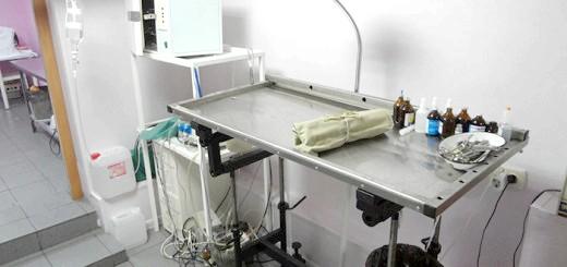 Фотографія операційної в ветклинике, moskow-vet.ru