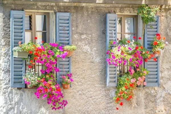 Віконниці, прикрашені петуніями і настурціями