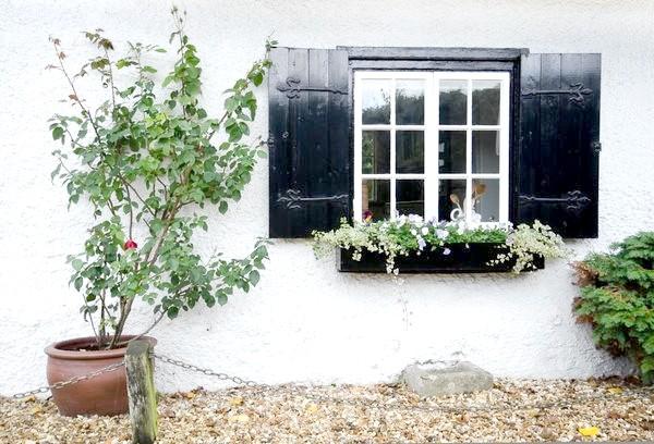 Віконниці для захисту