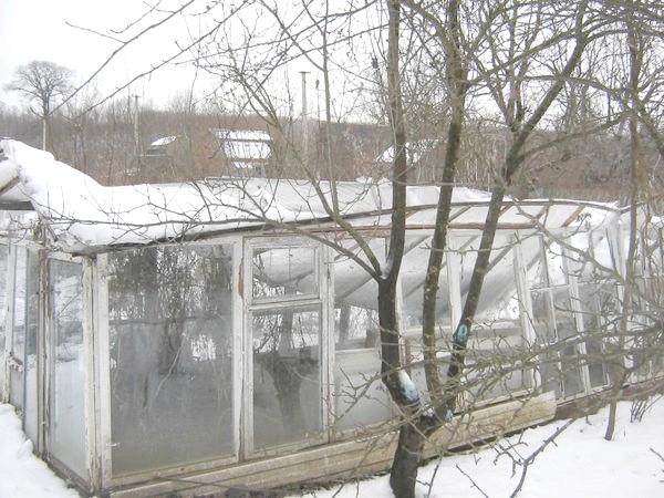 сніг розчавив теплицю