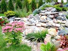 Кам'янистий сад