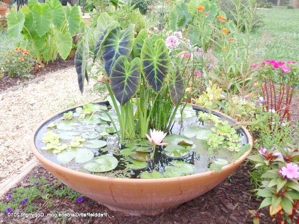 Міні-ставок в саду