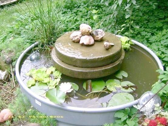 Мініатюрний водойма зі старої бочки