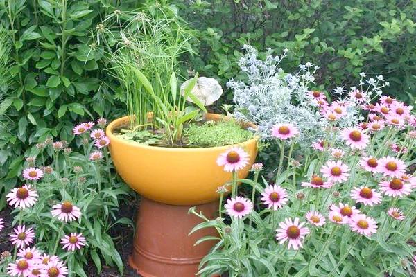 Піднесений міні-водойму в квітнику