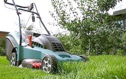 Вибираємо газонокосарку: на що звернути увагу