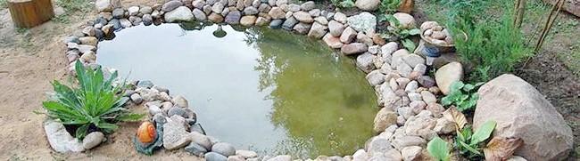 Декоративна водойма