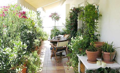 Фото - Як озеленити літню терасу на дачі