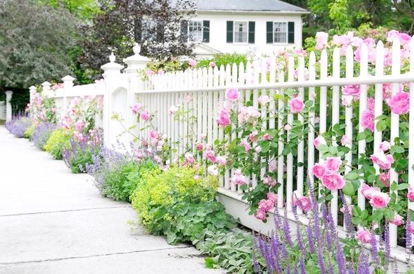 Фото - Як прикрасити паркан на дачі