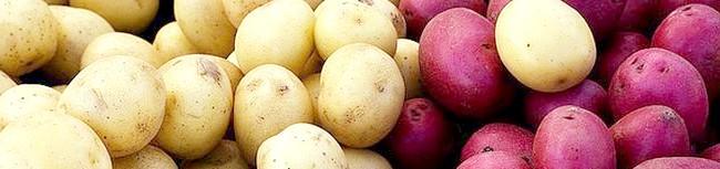 potatoes (1) 44