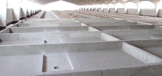 Фотографія бетонного пташника, fermer.ru