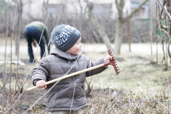 Фото - Сезонні роботи в саду і городі: перший тиждень квітня