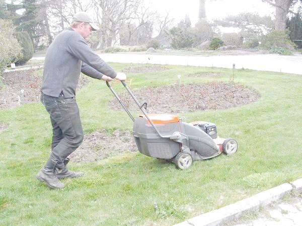 Фото - Сезонні роботи в саду і городі: перший тиждень березня