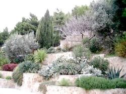 Середземноморський сад