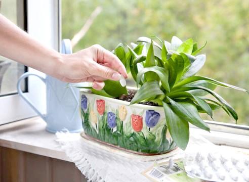 Фото - Весняна прибирання: спосіб підбадьоритися