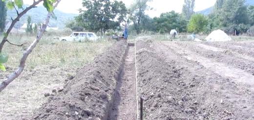 Підготовлений грунт для посадки малини, i1.ytimg.com