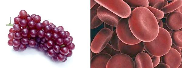 Виноград і еритроцити
