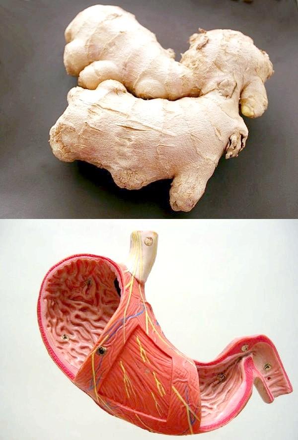 Імбир і шлунок