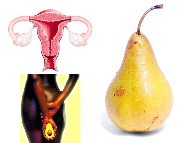 Груша, авокадо і матка.