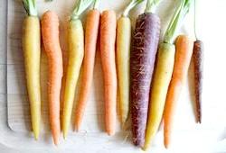 Фото - Фіолетова, біла і жовта морквина, а також найкращі сорти моркви