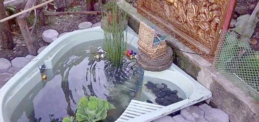Готовий ставок зі старої ванній, tnn-garden.ru