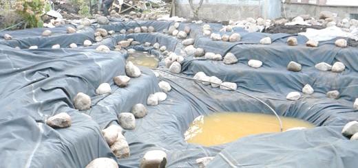 Укладання каменів в ставок для розведення риби, aquagroup.ru