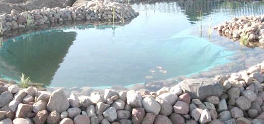 Штучний ставок для розведення риби, gazon-ua.com