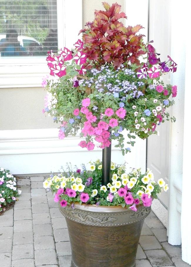 Гарний контейнерний квітник