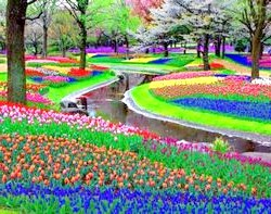 Сади і парки світу