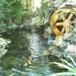 Фото - Створення штучних водойм та декоративних ставків