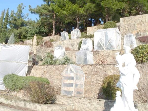 Фото - Зимовий укриття терасного саду